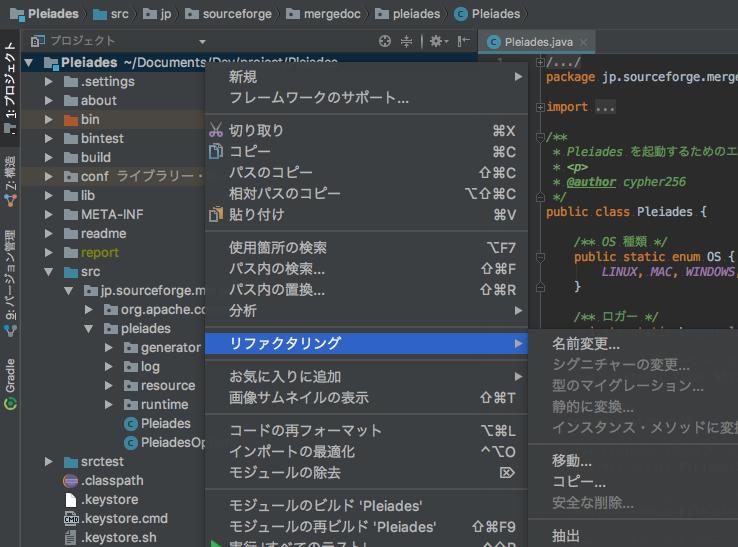 IntelliJ 日本語化